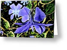 Vinca Art Greeting Card