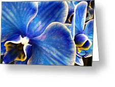 Vincent's Orchid Greeting Card