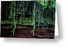 Vines Flow Over Creek Greeting Card
