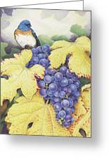 Vineyard Blue Greeting Card