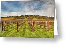 Vineyard Convergence Greeting Card