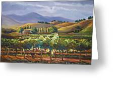 Vineyard In California Greeting Card