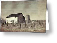 Vineyard In Winter Greeting Card