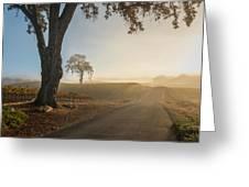 Vineyard Road Greeting Card