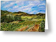 Vineyard Solitude Greeting Card