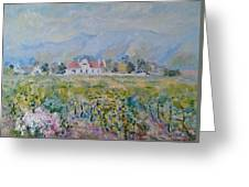 Vineyards At Excelsior In Summer Greeting Card