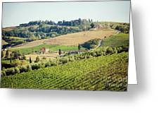 Vineyards With Stone House, Tuscany, Italy Greeting Card