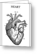 Vintage Anatomical Heart Greeting Card