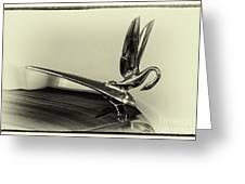 Vintage Cadilac 62, Hood Ornament Greeting Card