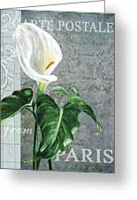 Vintage Calla Greeting Card