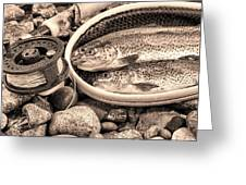 Vintage Concept Of Fly Reel And Pole With Trout In Net  Greeting Card