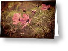 Vintage Cosmos Greeting Card