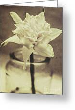 Vintage Floral Still Life Of A Pure White Bloom Greeting Card