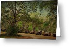 Vintage Harvey Trucks In Northwest Florida Greeting Card