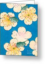Vintage Japanese Illustration Of Dogwood Blossoms Greeting Card
