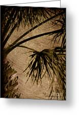 Vintage Palm Greeting Card