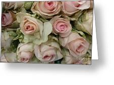 Vintage Pink Roses Greeting Card