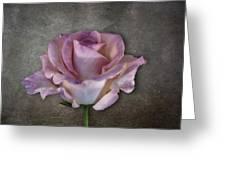Vintage Rose On Gray Greeting Card