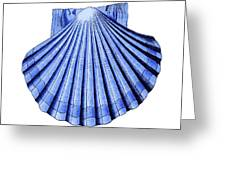 Vintage Scallop Shell Blue Greeting Card