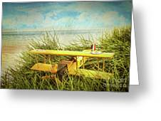 Vintage Toy Plane In Tall Grass At The Beach Greeting Card by Sandra Cunningham