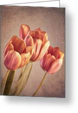 Vintage Tulips Greeting Card by Wim Lanclus