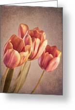 Vintage Tulips Greeting Card