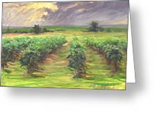Vinyard Greeting Card