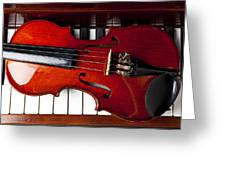 Viola On Piano Keys Greeting Card by Garry Gay