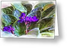 Violet Greeting Card by Beauty For God