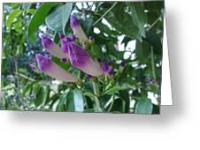 Violet Enrapture Greeting Card