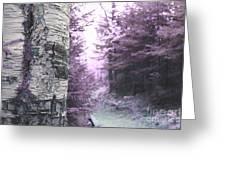 Violet Forest Greeting Card