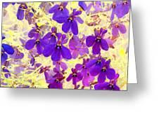 Violet Moths Greeting Card