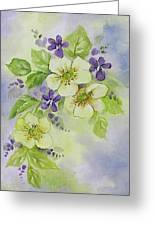 Violets And Wild Roses Greeting Card