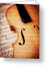 Violin And Musical Notes Greeting Card