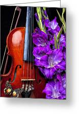Violin And Purple Glads Greeting Card by Garry Gay