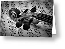 Violin Scroll On Sheet Music Greeting Card