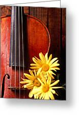 Violin With Daises  Greeting Card by Garry Gay