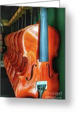 Violins For Sale Greeting Card