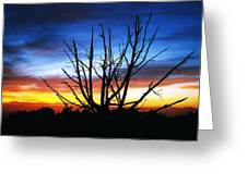 Virden Road Sunset Greeting Card