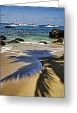 Virgin Gorda Beach Greeting Card