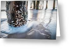 Virginia Beach Pier Greeting Card