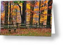 Virginia Country Roads - A Seat With A View - Autumn Colorfest No. 1 Near Mabry Mill - Floyd County Greeting Card