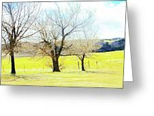 Virginia Dale-three Trees Greeting Card