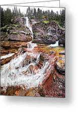 Virginia Falls - Glacier National Park Greeting Card