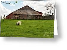 Virginia Farmyard Greeting Card