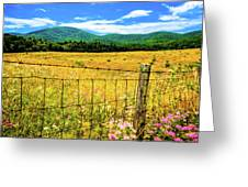 Virginia Fields Of Green Greeting Card by David Hahn