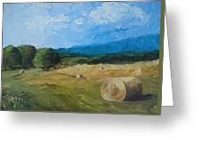 Virginia Hay Bales II Greeting Card