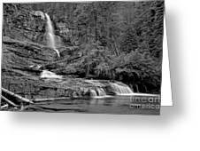 Virgnia Falls Pool - Black And White Greeting Card