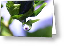 Vision In A Raindrop Greeting Card