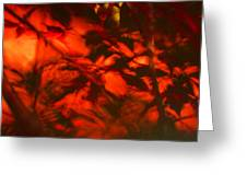Visions Of The Forest Floor Greeting Card